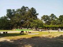 博多ホメホメ新聞-110515_0918~010001.jpg