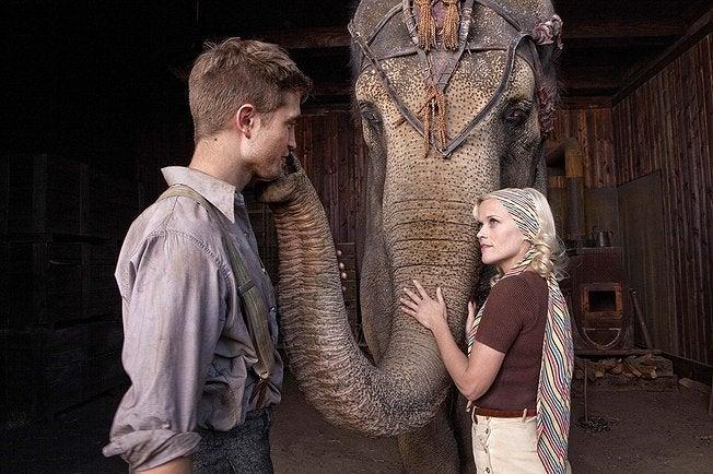 有閑マダムは何を観ているのか? in California-water for elephants