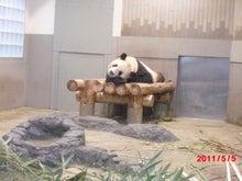 $キャリア・マム関東ブログ-上野動物園5
