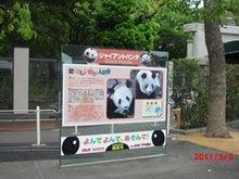 $キャリア・マム関東ブログ-上野動物園3