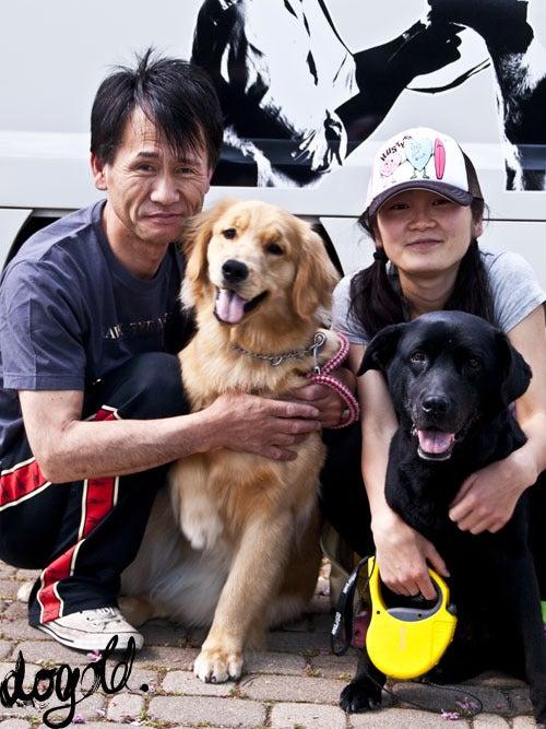 ドッグヘアアーティスト 大照のTOKYO DOGS