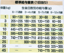 $柴犬カイとの生活-2011518
