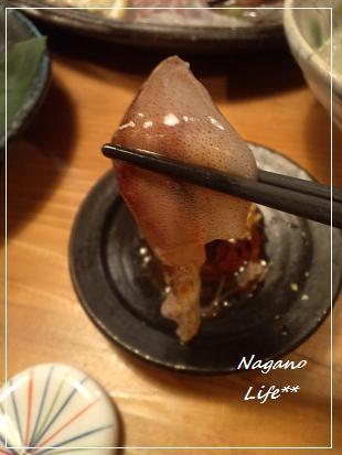 Nagano Life**-生ほたるいか