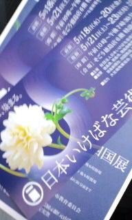Rainbow Diary-110522_0917~010001.jpg