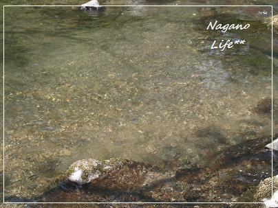 Nagano Life**-水
