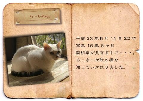 $繭組-らー01