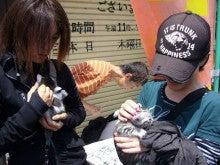 澤田モータースのブログ