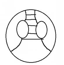 pon-system type-Z