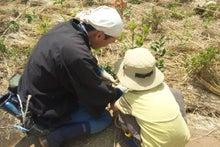 緑化推進事業の活動報告-5.22 豊島区植樹祭