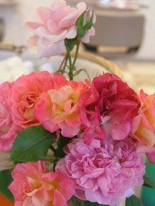 佐賀・有田町の美容室から(人の幸せを祈ります。)