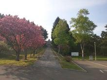 miyu1960さんのブログ-DSC_0793.JPG