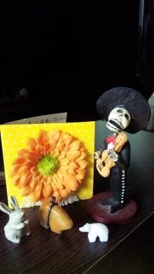 オカメインコのももちゃんと花教室と旅日記-110525_071952.jpg
