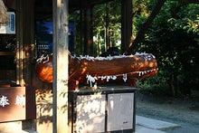 東條的世界最古の国へようこそ-弓削神宮3