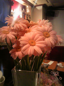 銀座Bar ZEPマスターの独り言-祝花