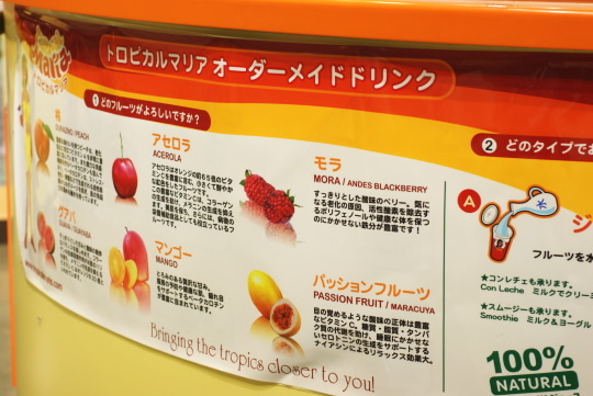 マンゴー 冷凍 お取り寄せ通販