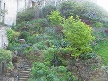 後藤英樹の三日坊主日記-中庭