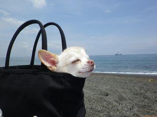 光永亮太オフィシャルブログ「雨のち晴れ」Powered by Ameba