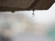 コトバの貯金箱-雨の日曜日