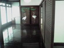 きんこのブログ-11-05-28_006.jpg
