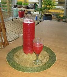 北欧からコンニチワ-ルバブ飲み物・3