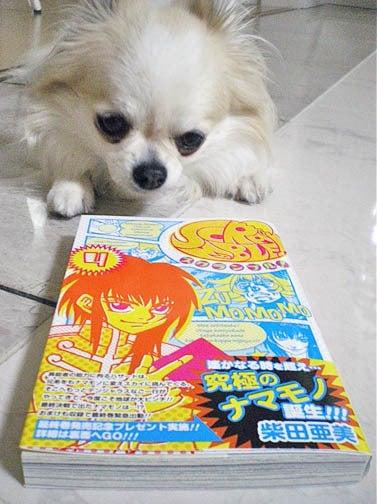 漫画家の犬たち-お宣伝