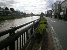 成田畳店(埼玉県宮代町)-2011053106560000.jpg