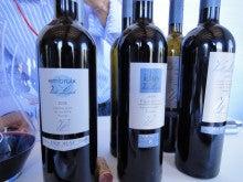 毎日スペインワイン