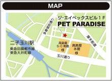 二子玉川ペットパラダイスのブログ
