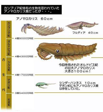 川崎悟司 オフィシャルブログ 古世界の住人 Powered by Ameba-アノマロカリス類の生息年代