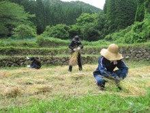 農トレ in 棚田【農業を好きになろう】-作業