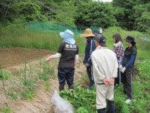 農トレ in 棚田【農業を好きになろう】-説明する瀬戸山