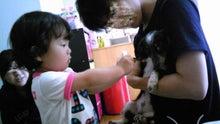 うにょにょん夫婦生活☆  ~ with BABY ~