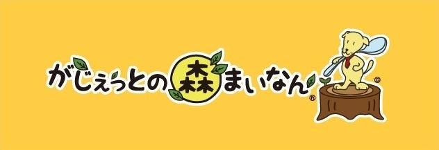「 がじぇっとの森まいなん 」  さぁ!冒険に出かけよう!! 横浜-泉-南まい-みなみまい