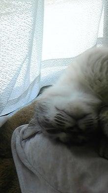 Chika-diary 2008~-DVC00370.jpg