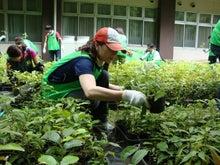 緑化推進事業の活動報告-6.12 CSR-みずほ銀行渋谷支店殿
