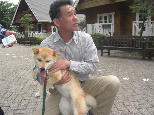 長崎の保健所の命を救う会の代表のブログ 長崎県の動物愛護団体です 犬と猫の里親譲渡会を毎月開催-3