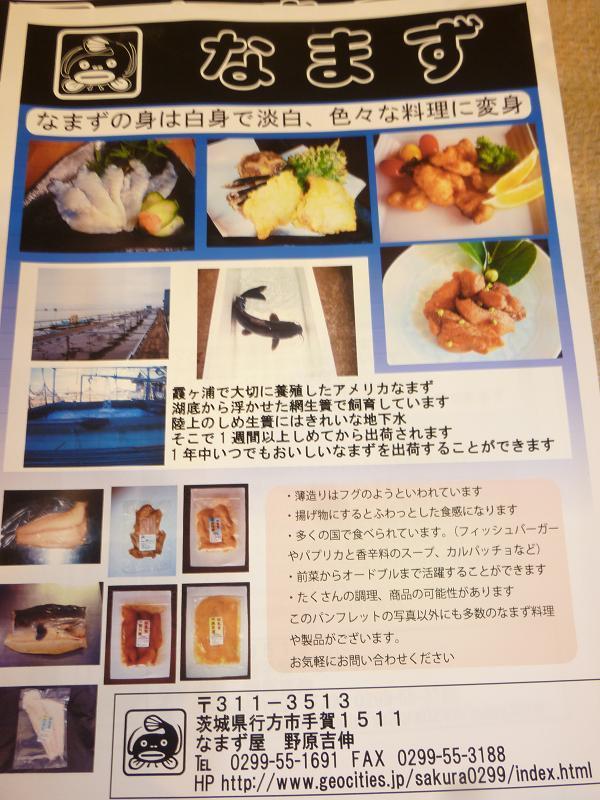 茨城県 行方市商工会 (なめがたししょうこうかい)-P1070429