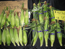 まごころ農園 まんさい市場