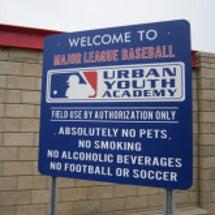 ‐MLBトライアウト…