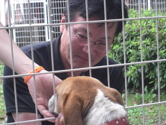 長崎の保健所の命を救う会の代表のブログ 長崎県の動物愛護団体です 犬と猫の里親譲渡会を毎月開催-感動の再会 トム君。
