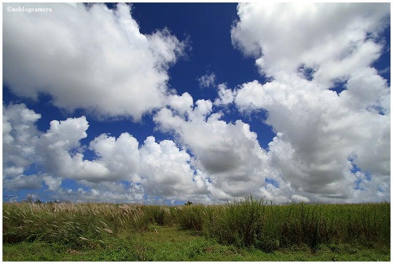 のぶろぐキャメラ-雲と草原