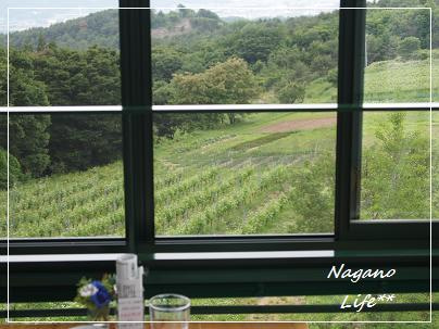 Nagano Life**-窓からの景色