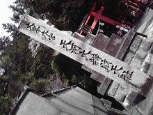 ねこぱんちさん-P1001018.JPG