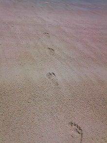 映画を観よう-2011夏砂浜