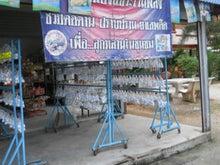 タイ暮らし-01