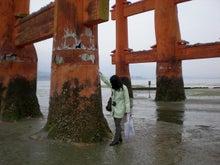 夫婦世界旅行-妻編-大鳥居の柱たち