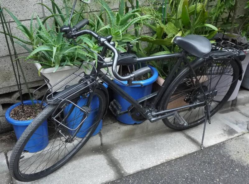 ... 自転車|スライダーズおやじ