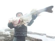 siomizuシオミズルアー! シーバスハンドメイドルアー製作者の釣行記-2011.6.26マル01
