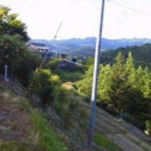 奈良県下市町の箸作り…