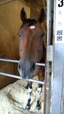 藤岡佑介 オフィシャルブログ 「馬に願いを」 Powered by Ameba-110630_065604.jpg